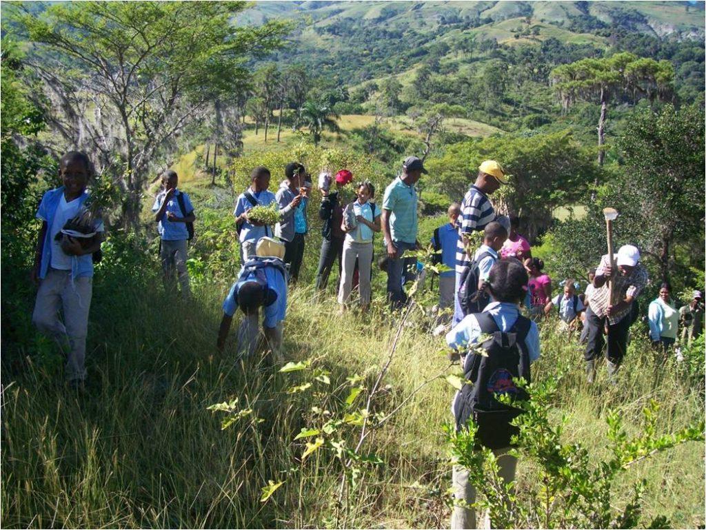 Reforestacion en la cuenca Rio Vallejuelo