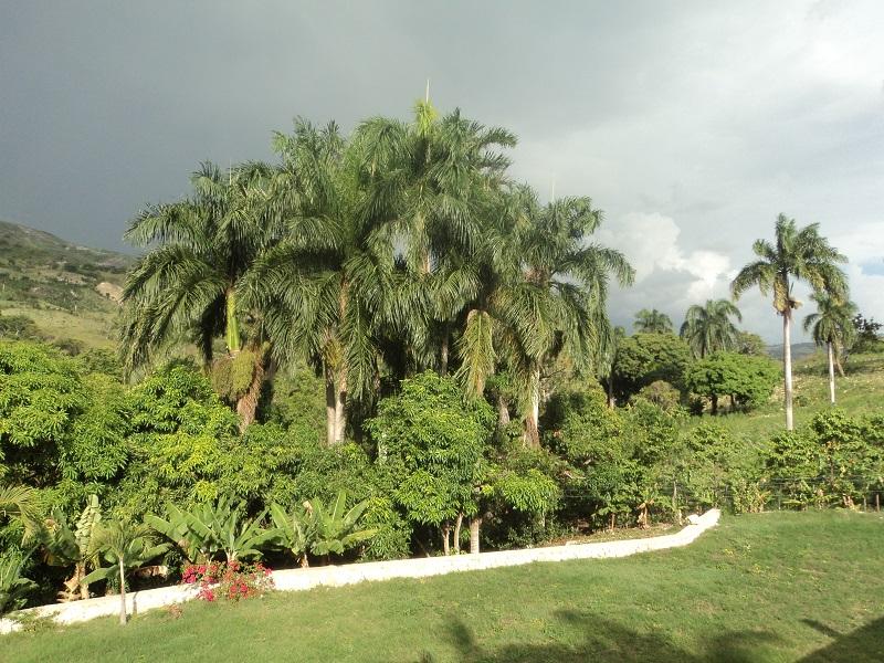 Villa Andrés-Vista